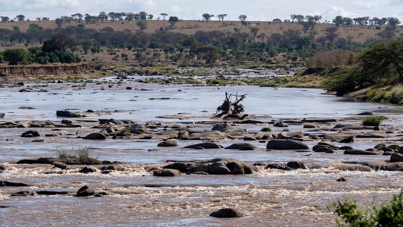 Tanzania-Serengeti-National-Park-Safari-05.jpg