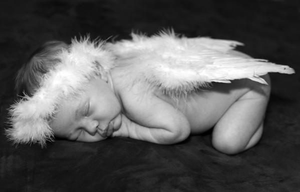 Charlotte ~ 16 days old