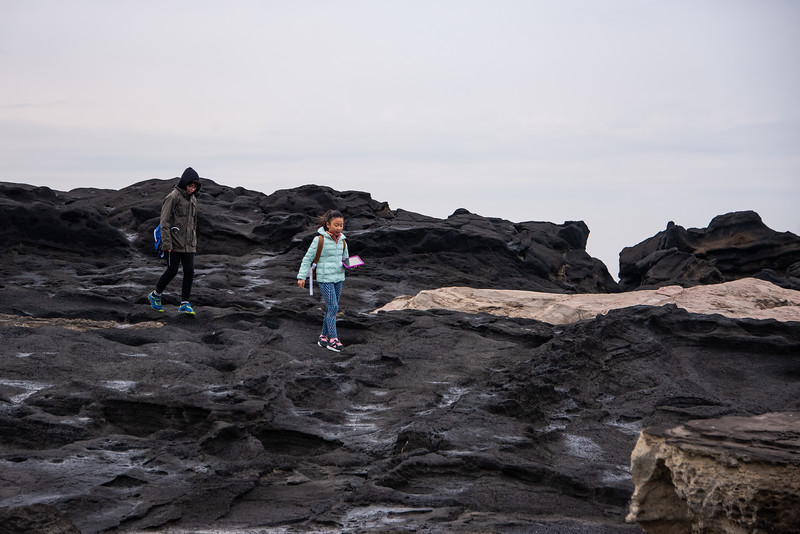 Grade 4 Field Trip-Jogashima-ELP_8098-2018-19.jpg
