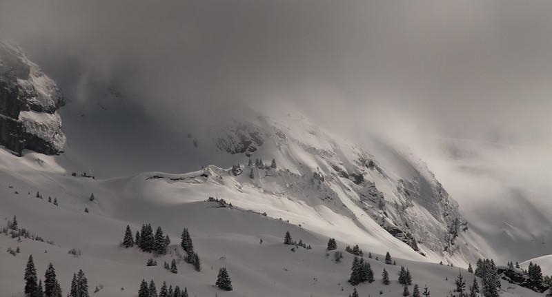 Panorama sans titre1.jpg