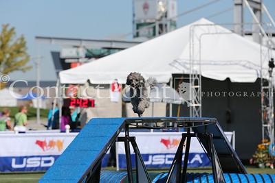 Cynosport - Grand Prix Semifinal - Group F