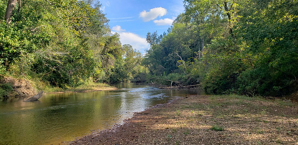 177 Acres on Falling River