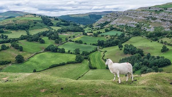Wales - 2013