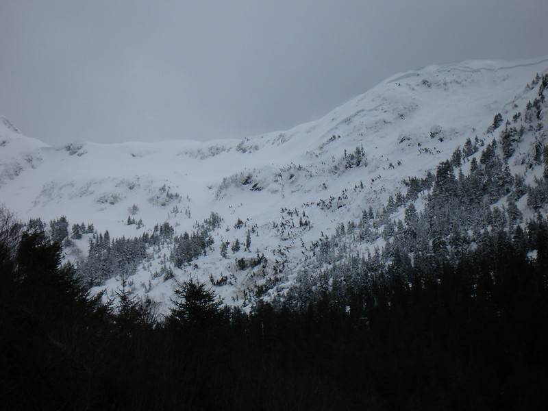 Alaska 2008 046.jpg