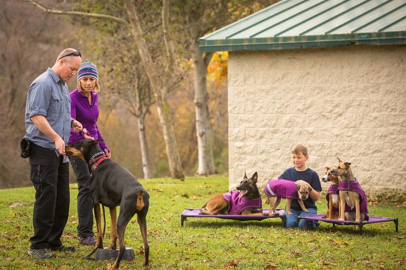Dog Photos-Edited-54.jpg