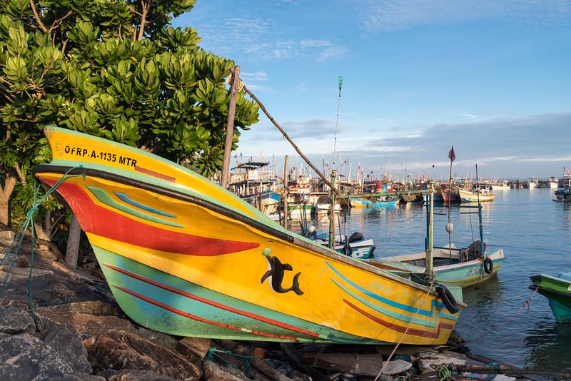 Fishing Boat Mirissa Harbour