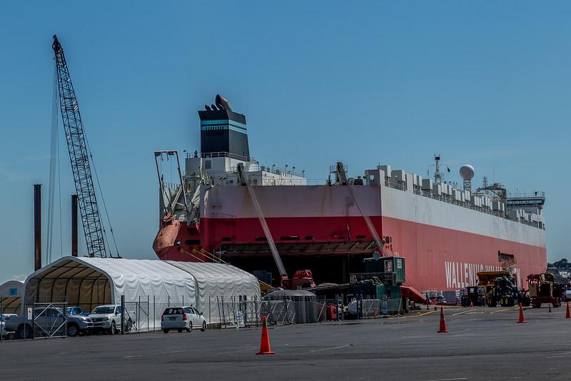 Das Schiff TYSLA ist in Auckland eingetroffen (im seinem Bauch befindet sich mein Wohnmobil)