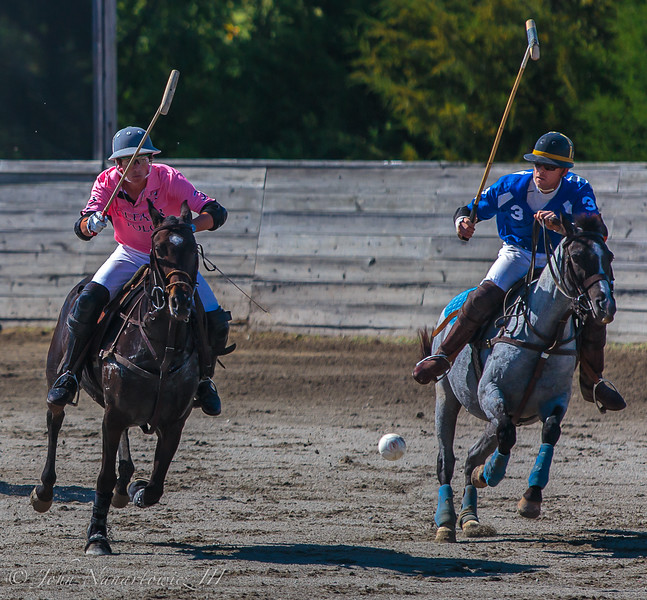 Pink & Blue! (Arena Polo)
