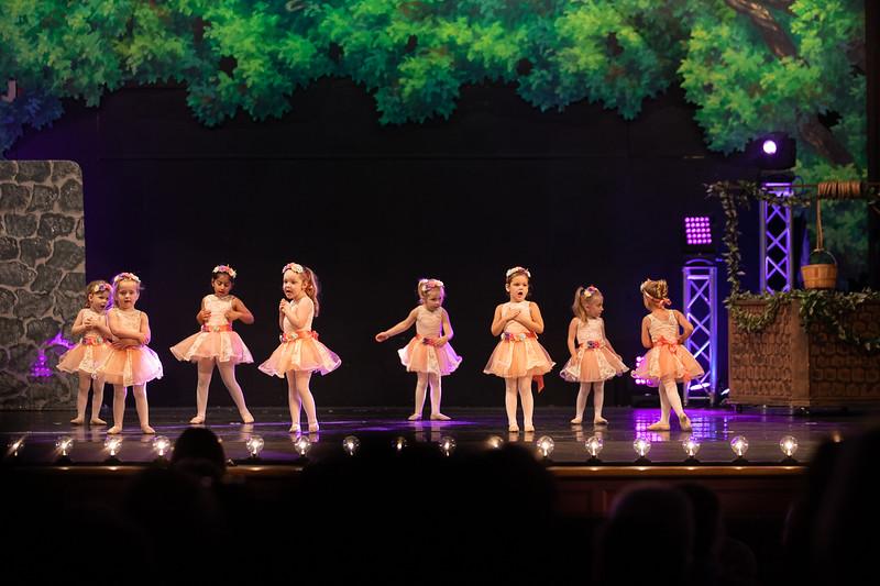 Dance Productions Recital 2019-331.jpg