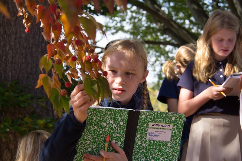 5th Grade Native Species Hunt