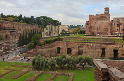 Italy, Rome, Palatine Hill and The Forum