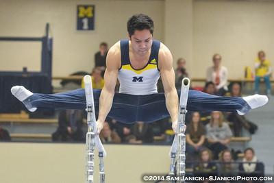 Parallel Bars from Michigan Men's Gymnastics Vs Nebraska 2-8-14