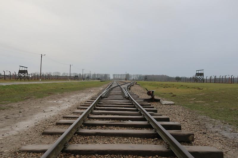 Auschwitz -Birkenau6.JPG