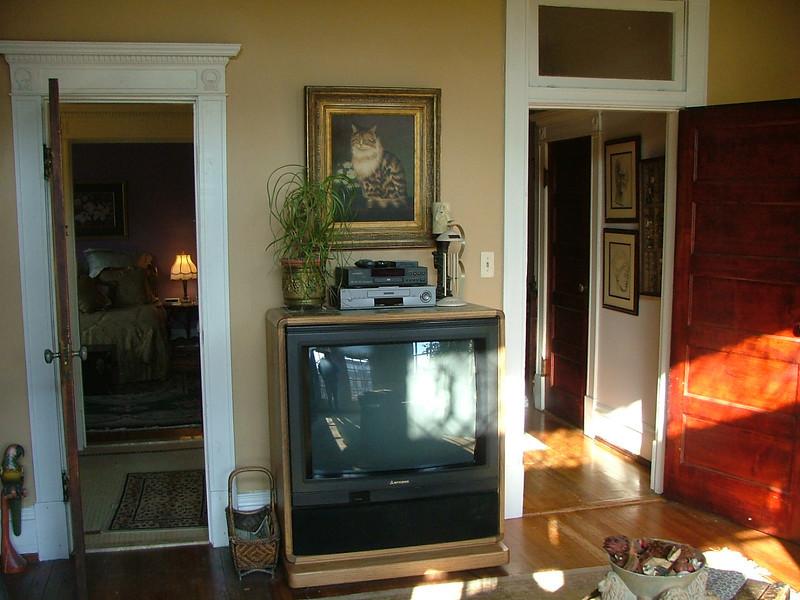 tv, kitty painting, light