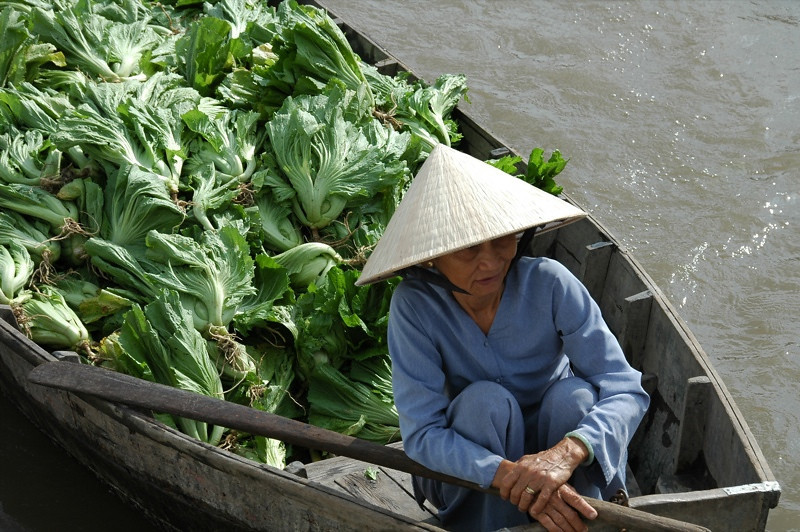 Greens on the Go - Mekong Delta, Vietnam