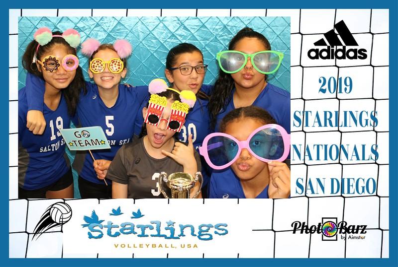 Starlings Volleyball (11).jpg