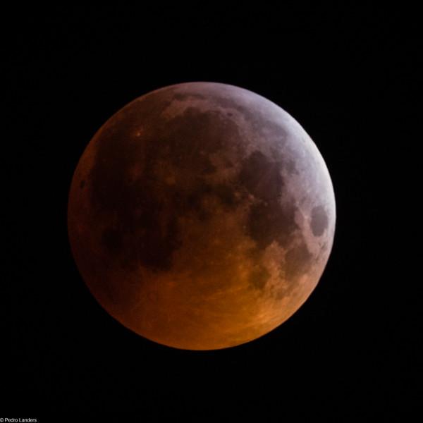 Super Blood Wolf Moon 1.jpg