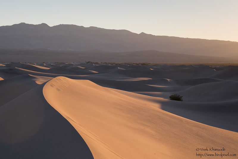 Mesquite Dunes - Death Valley National Park, CA, USA