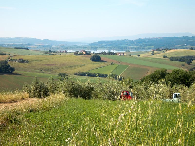 2015.06.01 Backroads Toscana 0061.jpg