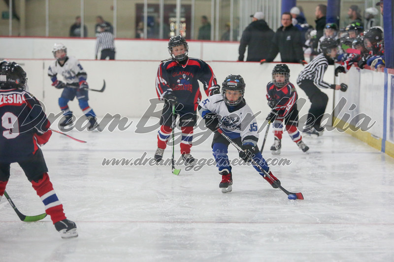 Blizzard Hockey 111719 7152.jpg