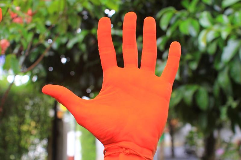 IMG_9749 Hand.JPG