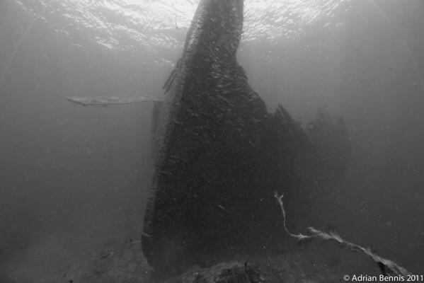 Wreck of the Conestoga