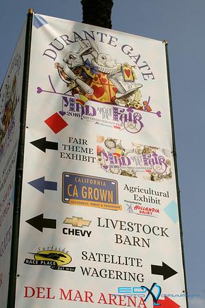 San Diego County Fair 2016