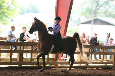 19) Academy W/T Equitation 11-12 year olds