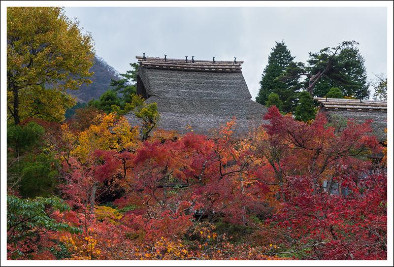 Hakone Museum-0663.jpg