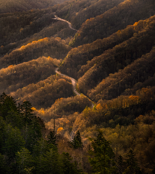 road traveling through smoky mountains