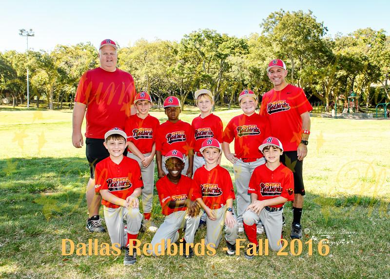 20161029 - #1 9U Redbirds