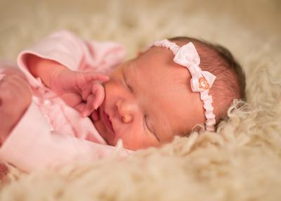 Smith Newborn 2017