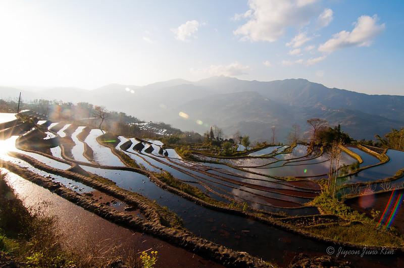 Xinjie rice terraces