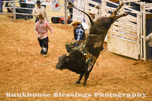 RODEO ~ 2014