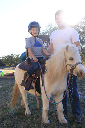 Horses & Babies