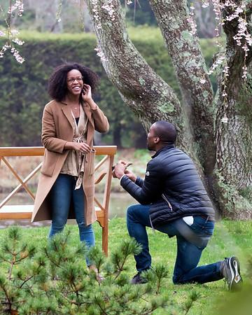 Raisa & Ndu Proposal