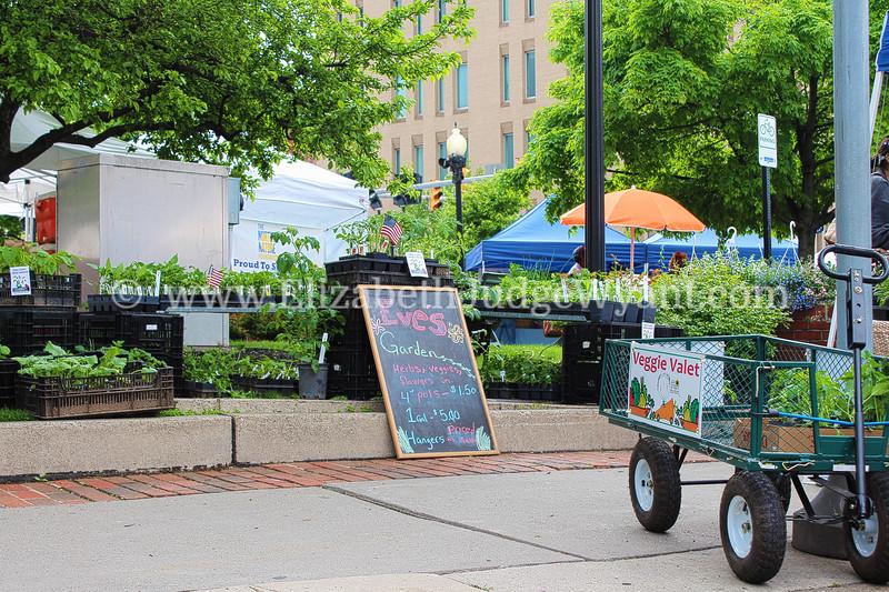 Easton Farmers' Market - 5/24/2014