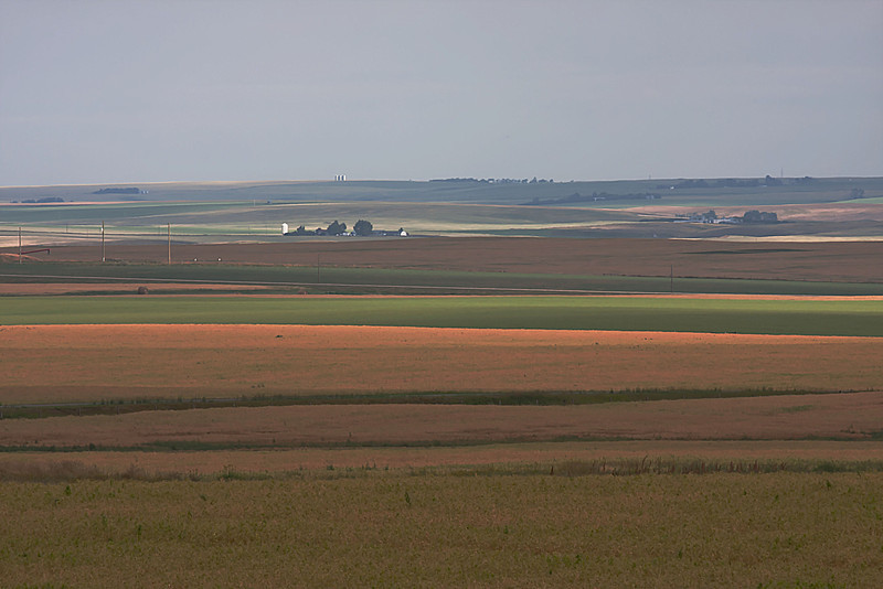 Farms in the distance provide a focal point for stories of the land.