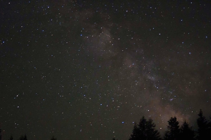 milky way trees.JPG