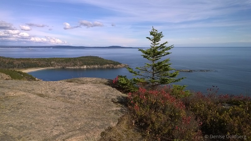 view from Gorham Mountain, Acadia National Park