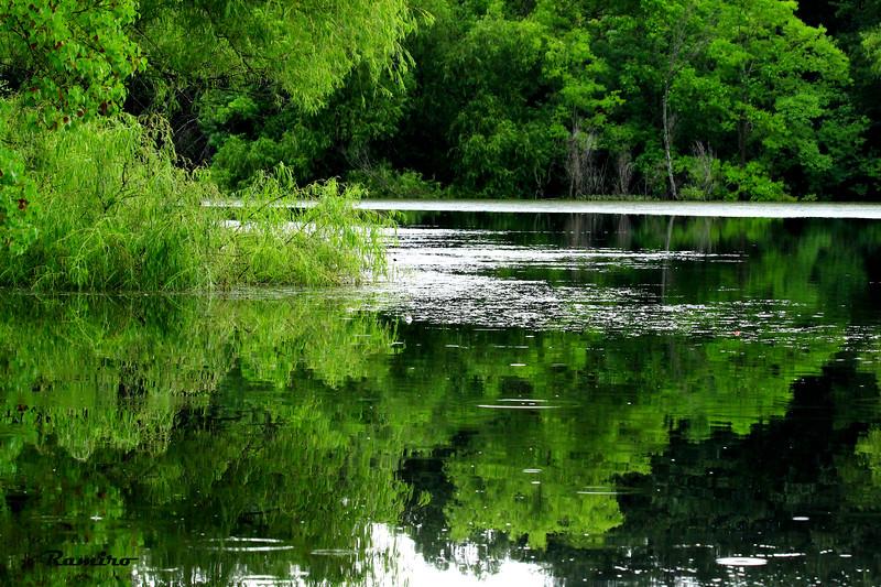 Buescher State Park 6-20-15 352.jpg
