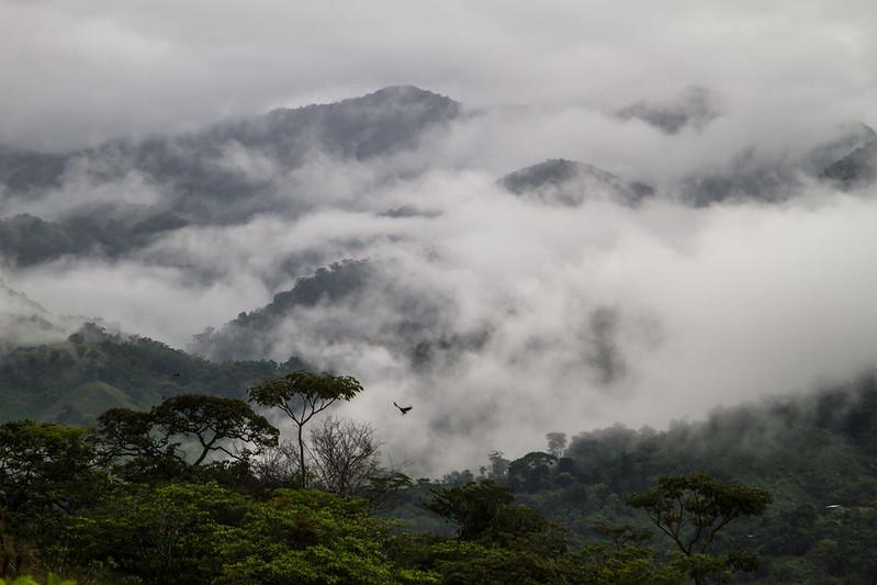 Panama_GN_8-2012-69-2.jpg