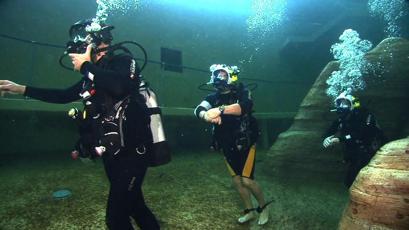 Underwater Walk Edit.00_00_46_06.Still020.jpg