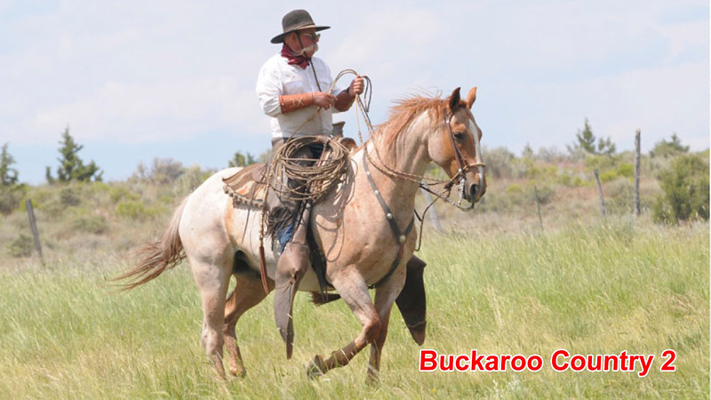 Great Basin Buckaroo.mp4