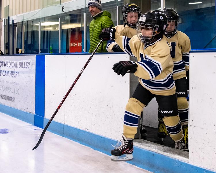 2019-Squirt Hockey-Tournament-220.jpg