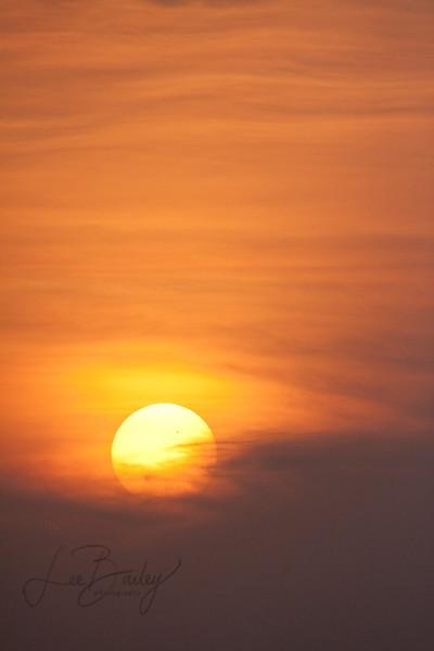 Sunset Bird Island Basin