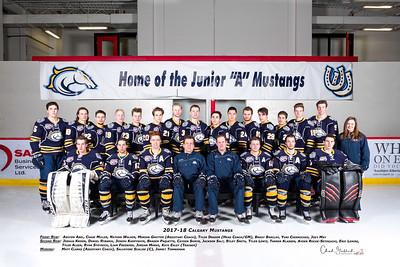 2017-18 Mustangs Team Photo
