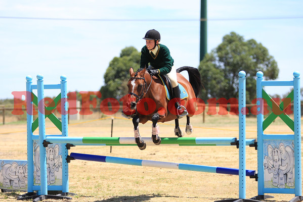 2014 02 16 Orange Grove Multi Discipline Day ShowJumping