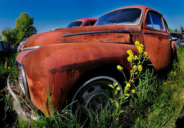 Volvo Graveyard 2008