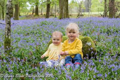 Bluebells - Elizabeth and Charlotte